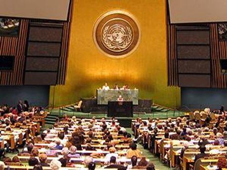 О возвращении Ливии проголосовали 123 делегации