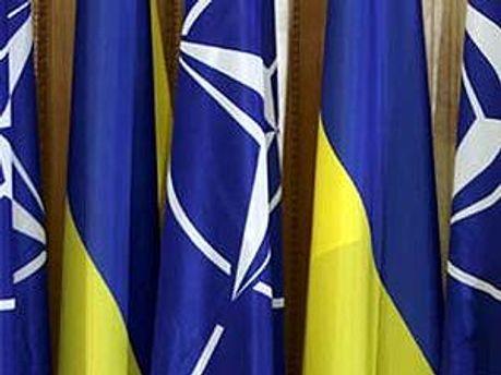НАТО дало позитивну оцінку
