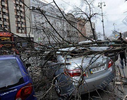 Україною пронісся сильний вітер