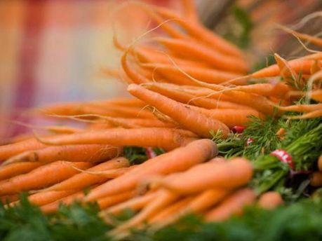 Україна стала лідером з вирощування моркви в Європі