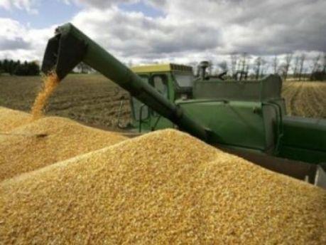 Бангладеш купил 300 тысяч тонн украинского зерна
