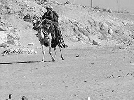 Бедуіни у Єгипті