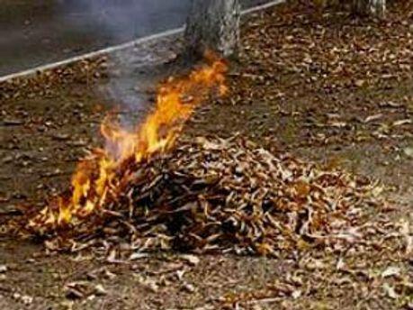 Спалення листя стало причиною смерті пенсіонера