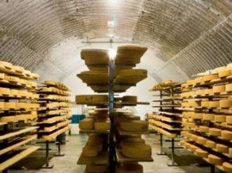 Склад сыра