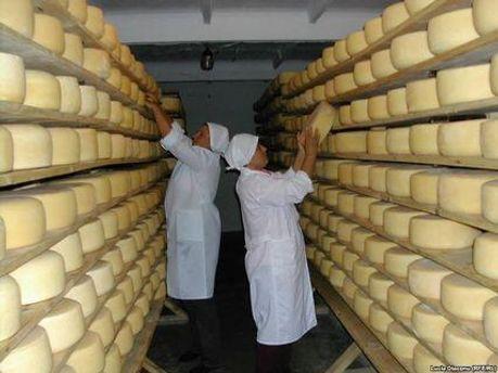 Замечания касаются техноологии приготовления сыра