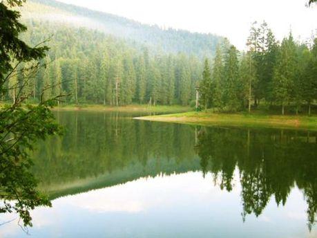 Площадь водоемов не должна превышать трех гектаров
