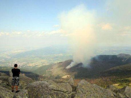 Лісова пожежа у заповіднику