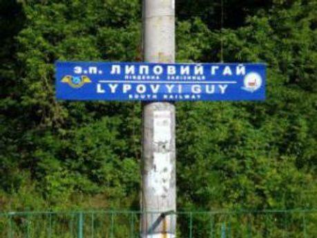 Станція Lypovyi Guy
