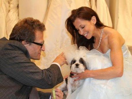 Собаче весілля