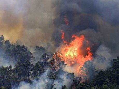 Пожежа на Канарських островах