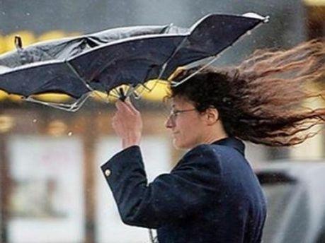 Сильные дождь и ветер