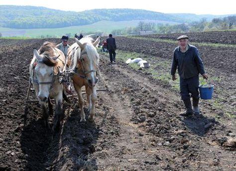 Українська земля