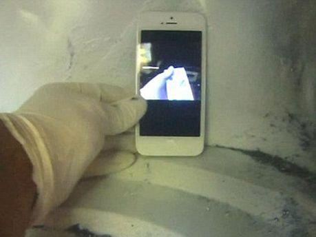 iPhone 5 в микроволновке