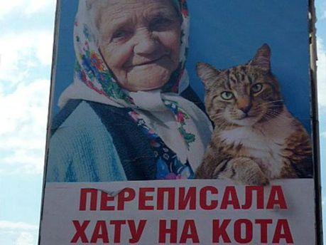 Білборд з бабусею і котом