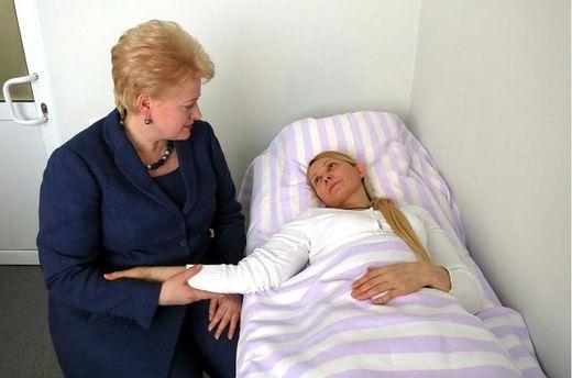 Юлія Тимошенко з президентом Литви