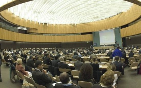 Рада ООН з прав людини