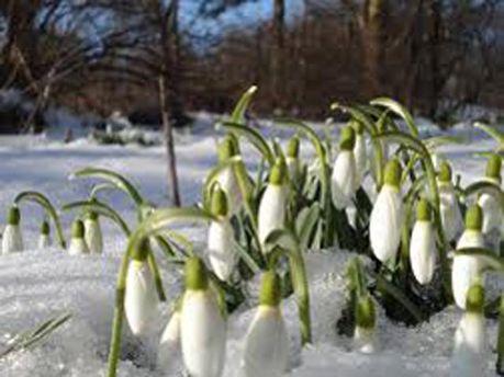 С 28 февраля потепление