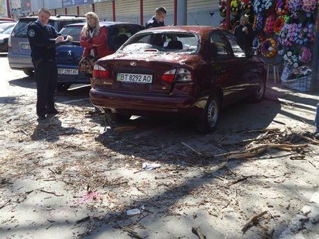 У Херсоні дерево впало на авто: 2 людини поранені (Фото. Відео)