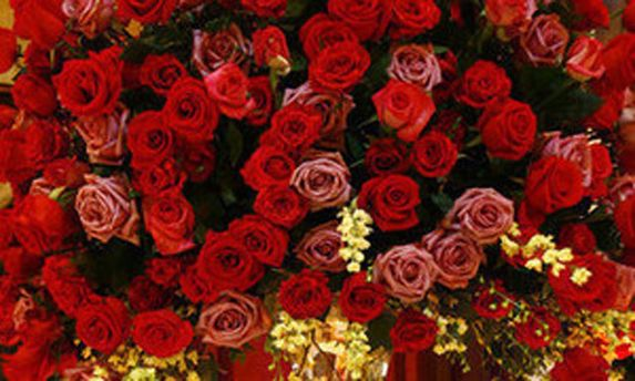 Фото квітів з привітання на сайті Партії регіонів