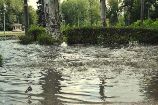 Затоплений парк