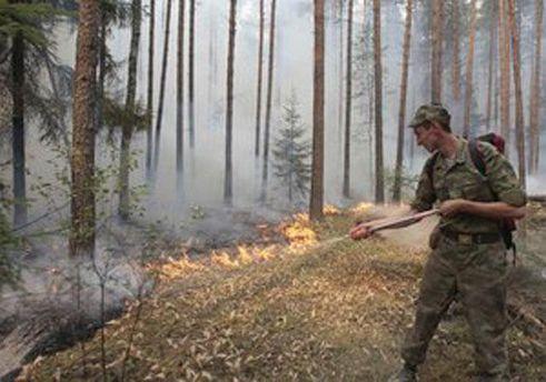 Гасіння пожежі в лісі