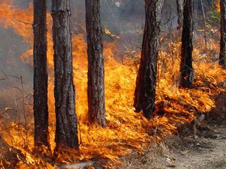 Утримається надзвичайна пожежна небезпека