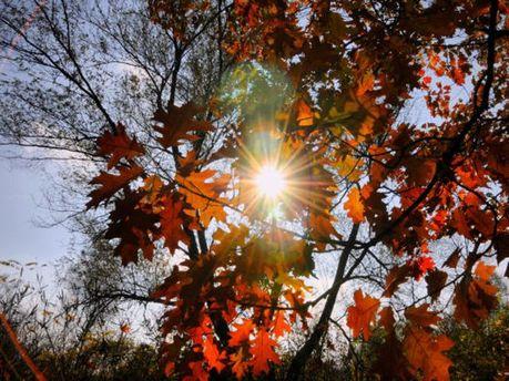 Часто визиратиме сонце