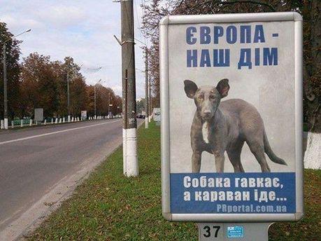 Собака в рекламе