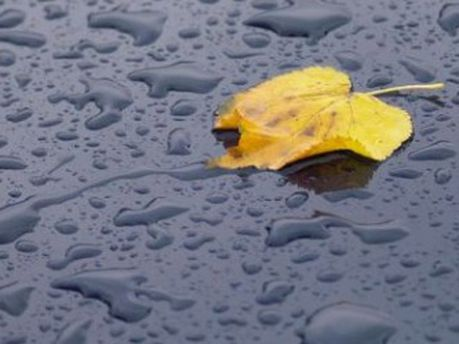 Прогнозують дощі