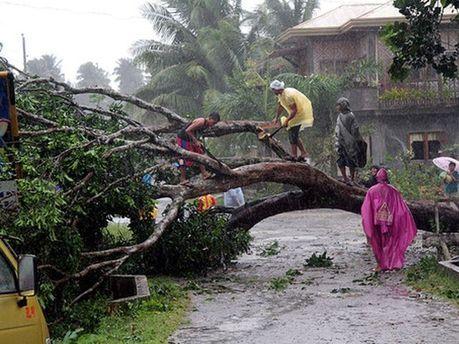 Наслідки тайфуну на Філіппінах