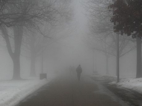 ГСЧС предупреждает о тумане