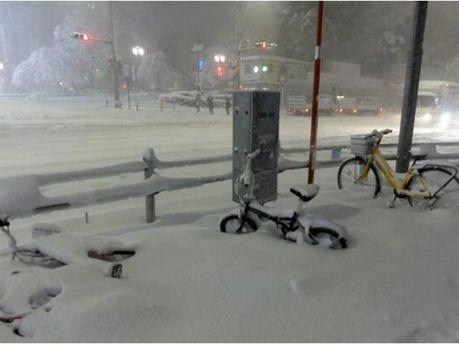 Снігова буря в Японії