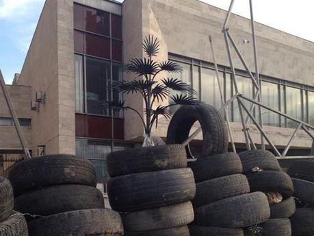 Пальма Мерцалова на баррикадах
