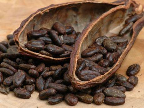 Какао боби
