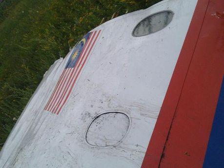 Сбитый малазийский самолет