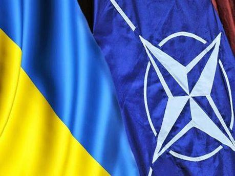 НАТО отрицает информацию об использовании баллистических ракет силами АТО