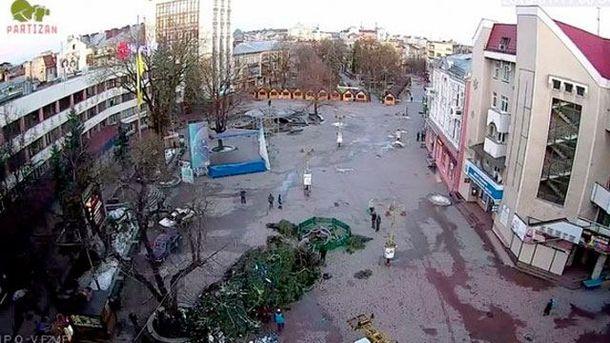 В Івано-Франківську впала ялинка