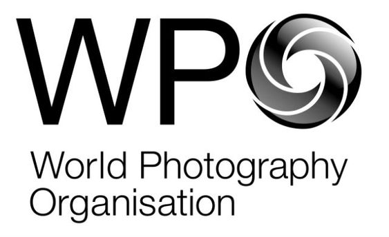 Фото із Євромайдану та бойових дій на Сході перемогли на Sony World Photography Awards