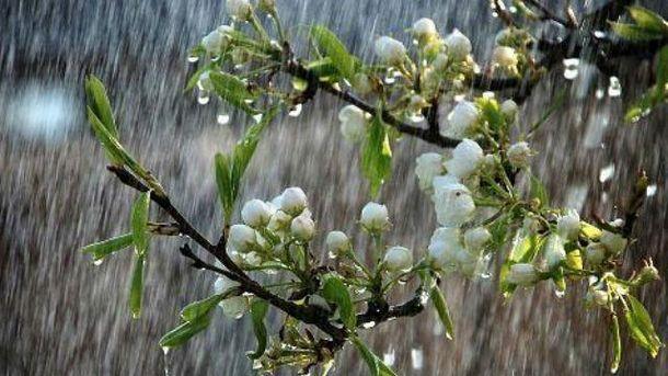 Погода 6 травня: на заході пройдуть грози