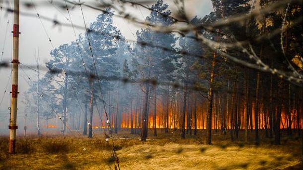 Лісові пожежі у Бурятії