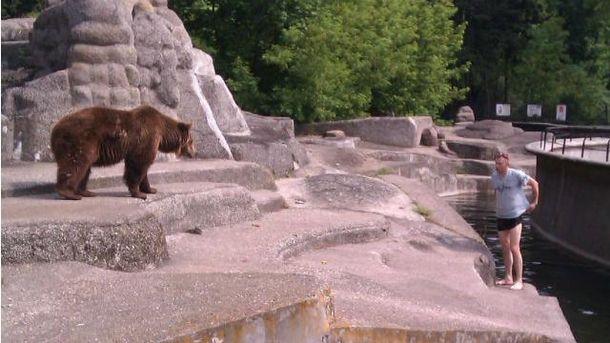Мужчина залез в вольер к медведю