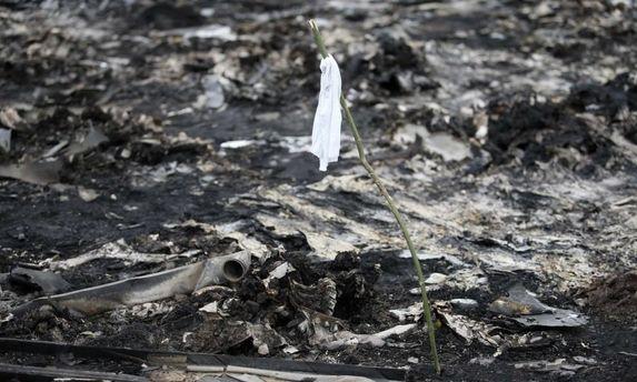 Донбасс. Пепелище на месте падения Boeing-777