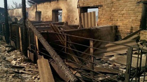 Свиноферма после пожара
