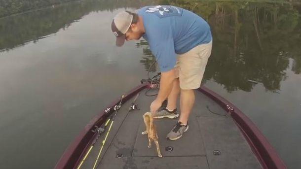 Рибак врятував з води кошенят