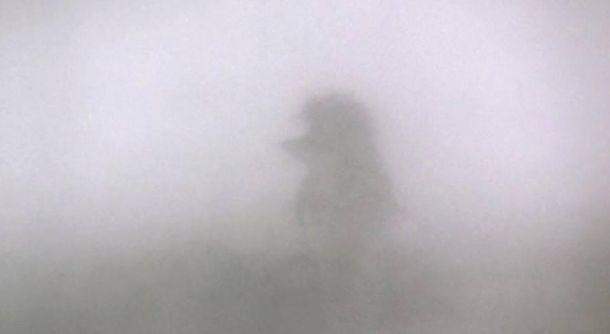 Ежики в тумане и фестиваль угара: реакция соцсетей на дым в Киеве