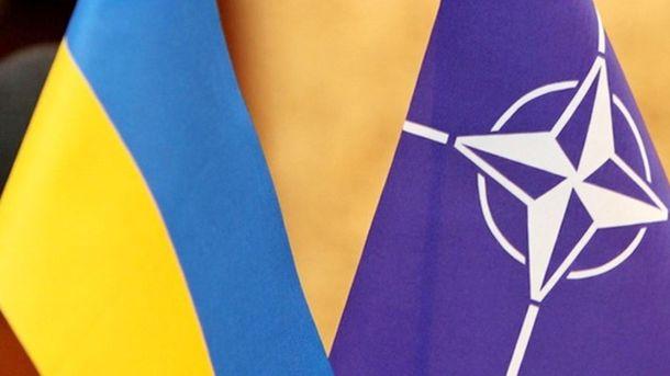 Флаги Украины и НАТО