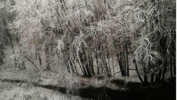 Сніг в Україні