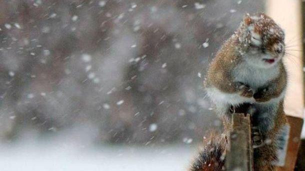 Погода в Україні погіршиться