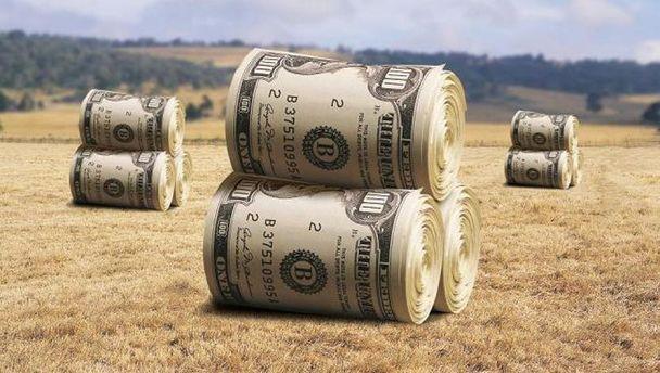 Впливовий голландський банк порадив підприємцям інвестувати вУкраїну