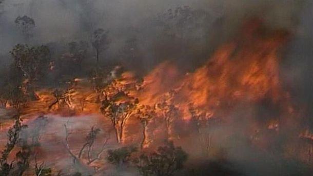 Лісові пожежі вАвстралії залишили людей на Різдво без житла